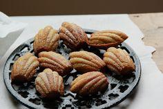 spiced vanilla madeleines   London Bakes