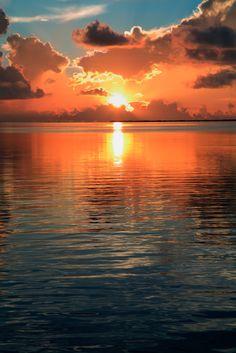 Anna Maria, Longboat Key or Sarasota - Where is the perfect place ...