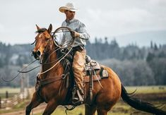 Western Quotes, Western Art, Cowboy Pictures, Cowboy Pics, Real Cowboys, Home On The Range, Ranch Life, Beautiful Horses, Country Life