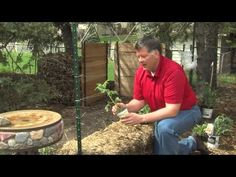 Hay Bale Gardening: Effortless Food Production with No Weeds, No Fertilizer & Less Watering (VIDEO) - EndAllDisease.com