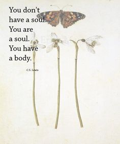 You don't have a soul. You are a soul. You have a body. | Quote: C.S. Lewis | Inspirational Quotes | Poetry | Vintage Botanical Prints | Butterflies | -Erica Massaro, EDMPrintedEphemera