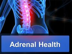 Adrenal Health. Adrenal Glands No bigger than a walnut and weighing less than a grape, each of your two adrenal glands sits like a tiny pyramid on top.