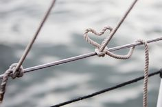 Tie the knot!  Aboard our Tall ships, your Boston sailing wedding event will be unbelievable.
