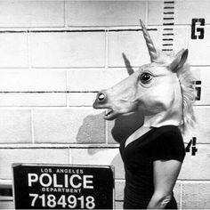 """""""Friday night goals?  #beaunicorntheysaid #unicorn #mugshot #fridaynight #trouble"""""""