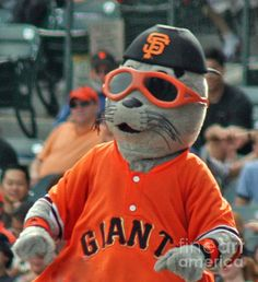 San Fransisco Giants