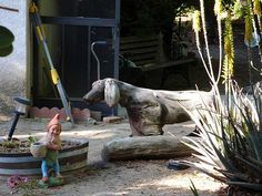 driftwood dog in a Sierra Madre garden by Manitoba Museum of Finds Art, via Flickr