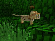 I have never seen anything so nicely wierd in the history of minecraft. Minecraft Stampy, Minecraft Baby, Minecraft Pixel Art, Cool Minecraft, Ocelot, Kittens Cutest, Diy Gifts, Dog Cat, Kitty