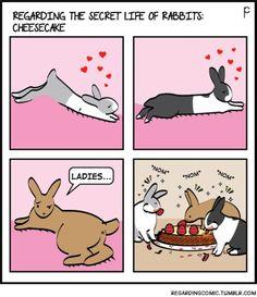 Bunny Meme, Funny Bunnies, Dutch Rabbit, Bunny Rabbit, Secret Life Of Rabbits, Bunny Halloween Costume, New Zealand Rabbits, House Rabbit Society, Bunny Art