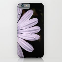 Buy Daisy Mauve iPhone & iPod Case by xiari_photo. Worldwide shipping available at Society6.com. Just one of millions of high quality products available. #phonecase #phoneskin #iphone #samsung #iphonecase #daisy, #mauve, #purple, #white, #violet, #indigo, #drop, #water, #flower, #nature, #natural, #garden, #outdoor, #backyard, #black, #background, #petals #bloom, #spring, #season, #happy, #central, #blue, #flowers, #head, #wet, #photo, #photography, #nikon, #dslr