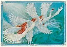 Legende irlandeze--The Children of Lir--Copii lui Lir. Cygnus Olor, Irish Mythology, Mute Swan, Legends And Myths, Unicorn Art, Fairytale Art, Dark Art, Fantasy Art, Fairy Tales