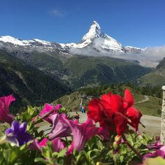 Matterhorn..was right up there at Klein Matterhhorn with hubby and son, Jonathan.