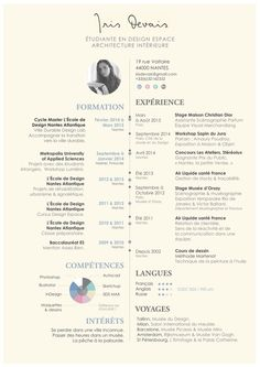 an infographic about myself architect infographic cv things i