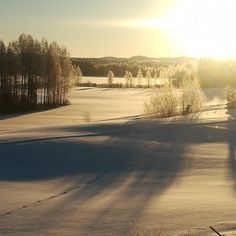 It's bitterly cold outside! What would you do on a sunny day like this? Days Like This, Winter Landscape, Sunny Days, Finland, The Outsiders, Frozen, Cold, Outdoor, Outdoors