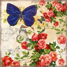 Aunque nos haya tocado ya dar la bienvenida al otoño...yo siempre guardo mariposas en el estómago...en la cabeza...y en mis ojos...         ...