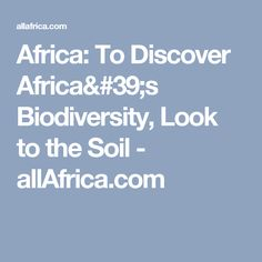 Africa: To Discover Africa's Biodiversity, Look to the Soil - allAfrica.com