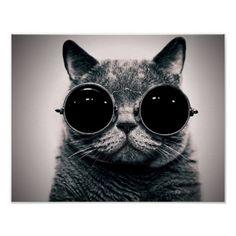 .lui è il gatto, io la volpe, siamo in società. Di noi ti puoi fidar
