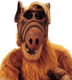 The Hub's ALF Week Hosted By ALF Kicks-Off New Schedule; ASPiRE TV Launches With Julia, Bill Cosby Show, Flip Wilson - SitcomsOnline.com News Blog
