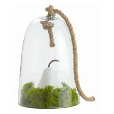 The heavy rope handle gives this a nautical, natural take on the traditional display cloche. Cover a piece of cheese for a party or use to display a treasure.
