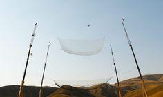Estadounidense se convierte en primero en saltar 7,620 metros sin paracaídas | Noticias de Nicaragua