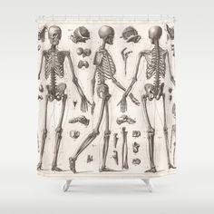 Anatomy Shower Curtain