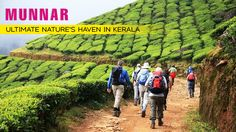How about staying at a tree house or mountain biking through the rolling hills of tea or hiking for that matter? All these and more in the extremely stunning hill station town of #Munnar in #Kerala.