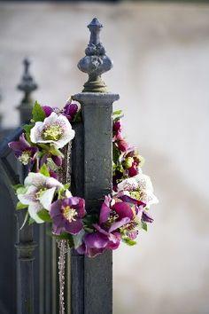 Hellebore Wreath // Blomsterverkstad