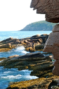 Jagged Maine Coast in Acadia National Park by heatherganter, 8x10 $25.00
