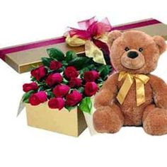 What say's I love you more than a stuffed toy and some Tulips!!! www.healthybeingyou.com