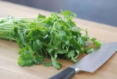 Kitchen Hack – How To Preserve Cilantro For a Longer Time #THeHacksOfLife #ad