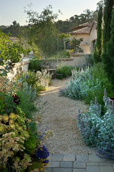 Outdoor Living : Gardening : Drought Tolerant Garden Plants : Ceramic pots, grasses, gravel path, outdoor furniture, and use of succulents make this Tuscan garden a great place to relax. :: Garden by Margie Grace SantaBarbara Modern Landscaping, Outdoor Landscaping, Front Yard Landscaping, Outdoor Gardens, Spanish Landscaping, Courtyard Gardens, Tuscan Garden, Mediterranean Garden Design, Drought Tolerant Garden