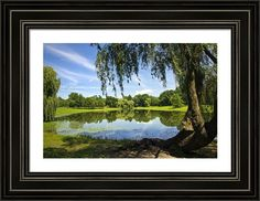 Summertime At Otsiningo Park by Christina Rollo © www.rollosphotos.com. A perfect summer day for a picnic under this willow tree, looking out over pond at fresh green landscape and beautiful blue sky at Otsiningo Park in Binghamton NY, USA. #NewYork #park #fineart #landscape #rollosphotos