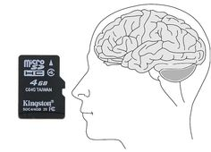 """How many memory cards do you need to """"equal"""" the #memory capacity of the human #brain? The """"answer"""" is 625,000 4GB memory cards"""