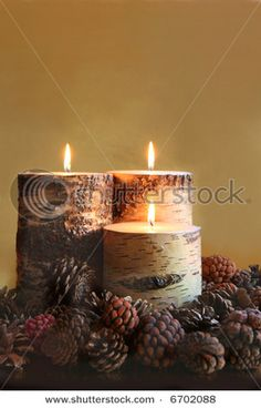 candle centerpiece. rustic. pine cones. FALL. Autumn.