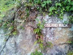rawa island walk