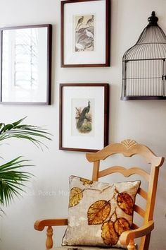 Potted Palms Indoors - Back Porch Musings