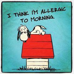 Duras mañanas...