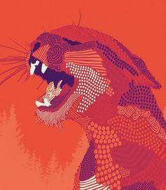 Puma Concolor illustration by Mariah Hourihan