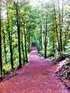 Lacamas Creek Trail.....my favorite hiking trail so far!