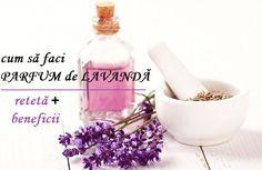 PARFUM de LAVANDĂ făcut în casă (rețetă + efecte terapeutice) | LaTAIFAS