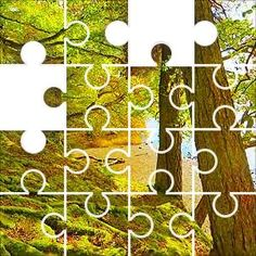 Trees by Lake Jigsaw Puzzle, 184 Piece Crazy. Trees next to water, moss covered root system, mature trees, green and