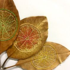 This is an on going collection of hand embroidered magnolia leaves. All of the illustrations for the embroideries are mine, all the leaves are real, and are handled carefully and preserved to last. Leaf Crafts, Flower Crafts, Embroidery Leaf, Embroidery Patterns, Dry Leaf Art, Embroidered Leaves, Crochet Leaves, Magnolia Leaves, Textiles
