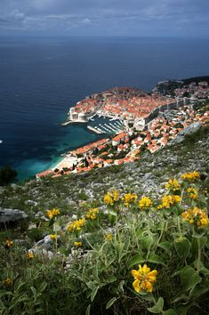 This medieval walled city is full of historic and natural treasures. Come see for yourself in Dubrovnik, Croatia! Cruise Europe, Cruise Port, Cruise Destinations, Walled City, Adriatic Sea, Dubrovnik Croatia, Come And See, Cruises, World Heritage Sites