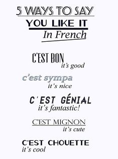 Because slowly learning French by phrases and words is difficult, and small phrases are easy to incorporate into conversation with the other people I know who are at the same non-level I am with my basic French studies.