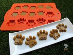 (wheat, grain, gluten and dairy-free) pumpkin turkey gummies dog treat recipe