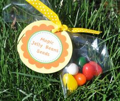 A friend who is a mother told me a great Easter tradition: Plant jelly beans with your kids on Good Friday, ask them to water them on Saturday, on Easter morning see the lollipops in the ground where the jelly beans were planted! I love this story, it makes me
