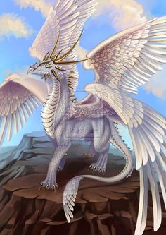 Gotta love a white dragon with feathered wings!