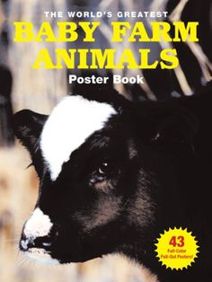 Cutest pets around the world book