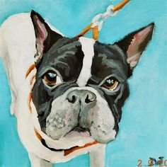 """Daily Paintworks - """"Boston Terrier 2"""" - Original Fine Art for Sale - © Daryl West"""