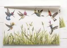 Hummingbirds Paper Placemats