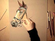 Canson® présente : Dessiner un cheval au Pastel avec P. Baffou - YouTube Art Tutorials, Painting Tutorials, Canson, Horse Artwork, Pastel Pencils, Animal Drawings, Pastel Paintings, Horses, Youtube